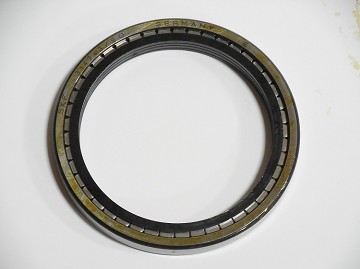 Cylindrical Roller Bearing - Side Gear